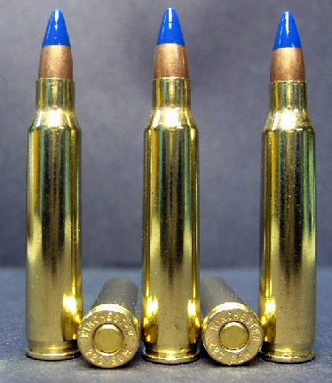 .223 cal. M-191 Incendiary Ammo (20ct.)