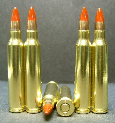 .223 cal. M-196 Tracer Ammo (20ct.)