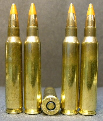 .223 cal. Lake City M-856 Tracer Ammo (20ct.)